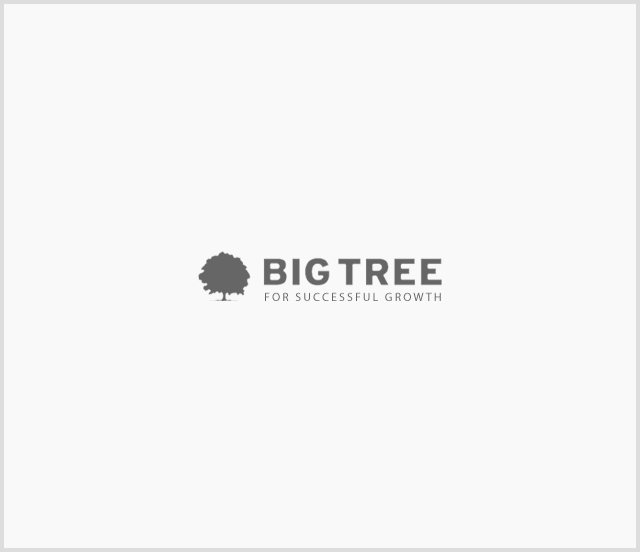 partner_bigtree